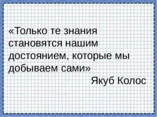 «Только те знания становятся нашим достоянием, которые мы добываем сами» Якуб