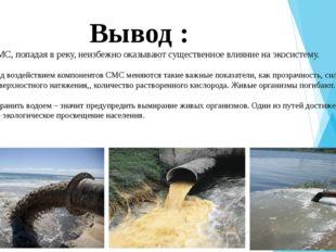 Вывод : СМС, попадая в реку, неизбежно оказывают существенное влияние на эко