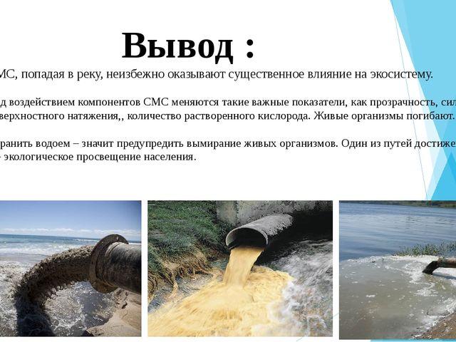 Вывод : СМС, попадая в реку, неизбежно оказывают существенное влияние на эко...
