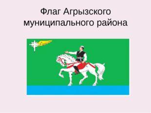 Флаг Агрызского муниципального района