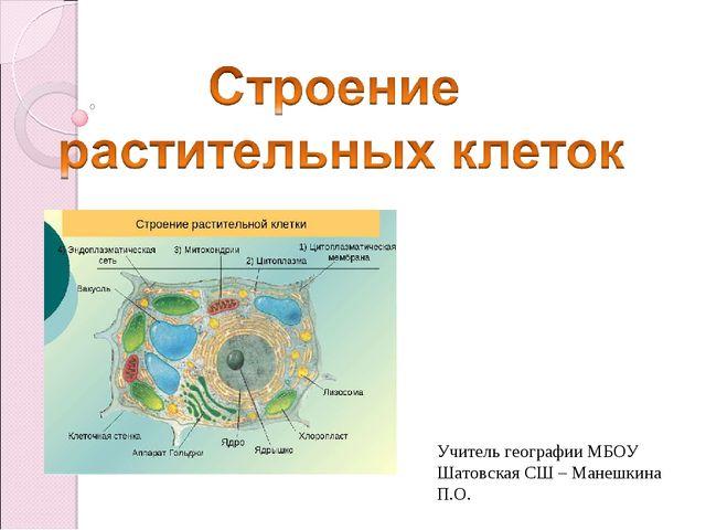 Учитель географии МБОУ Шатовская СШ – Манешкина П.О.