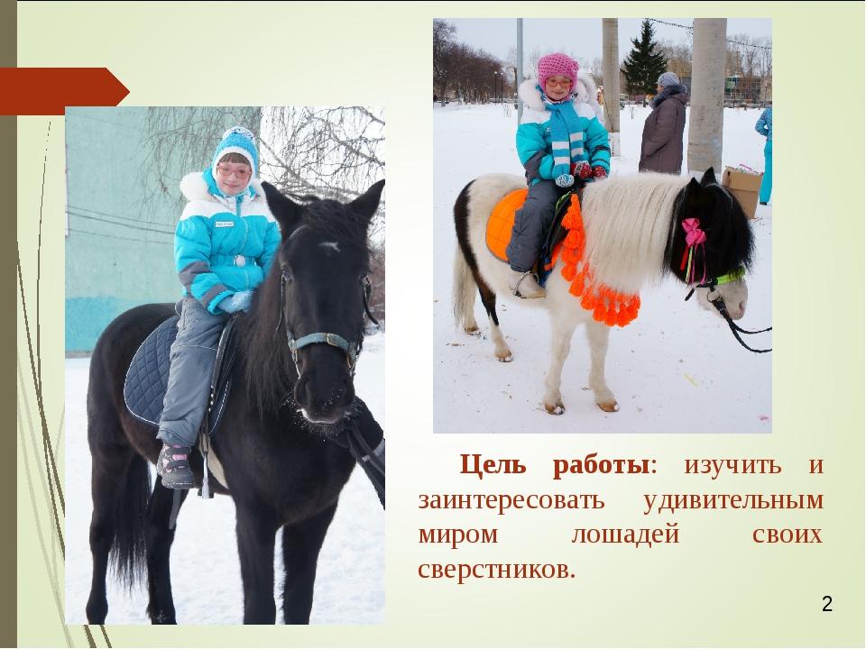 Цель работы: изучить и заинтересовать удивительным миром лошадей своих сверст...