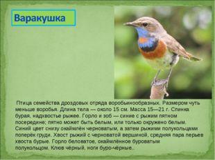 Птица семействадроздовыхотрядаворобьинообразных. Размером чуть меньше вор