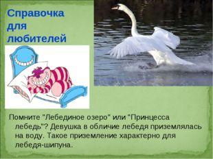 "Помните ""Лебединое озеро"" или ""Принцесса лебедь""? Девушка в обличие лебедя пр"
