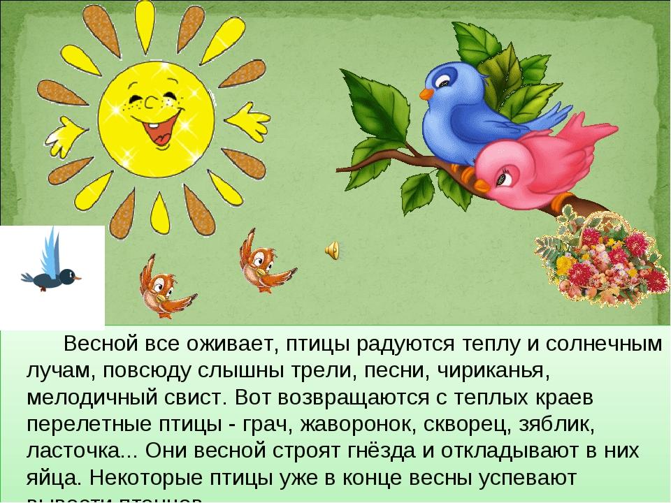 Весной все оживает, птицы радуются теплу и солнечным лучам, повсюду слышны т...