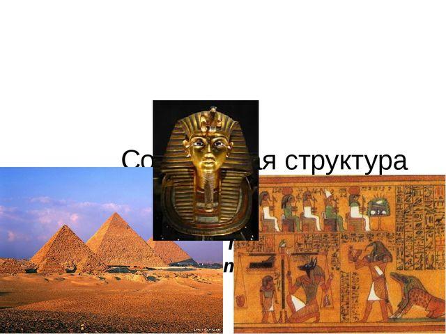 Социальная структура Древнего Египта. V-ый класс Учитель истории: Профир Кри...