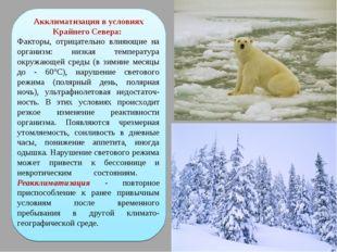 Акклиматизация в условиях Крайнего Севера: Факторы, отрицательно влияющие на