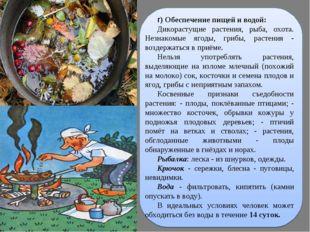 г) Обеспечение пищей и водой: Дикорастущие растения, рыба, охота. Незнакомые