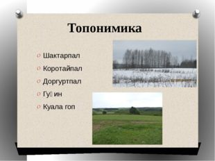 Топонимика Шактарпал Коротайпал Доргуртпал Гуӵин Куала гоп
