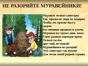 НЕ РАЗОРЯЙТЕ МУРАВЕЙНИКИ! Муравьи лесные санитары Так прозвали люди их недаро