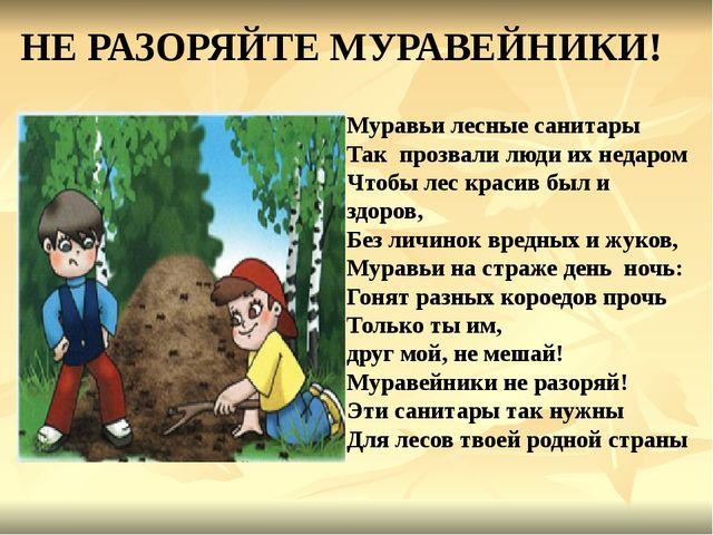 НЕ РАЗОРЯЙТЕ МУРАВЕЙНИКИ! Муравьи лесные санитары Так прозвали люди их недаро...