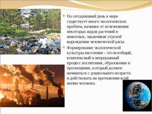 На сегодняшний день в мире существует много экологических проблем, начиняя от