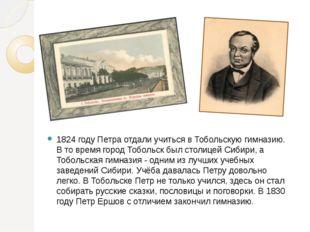 1824 году Петра отдали учиться в Тобольскую гимназию. В то время город Тоболь