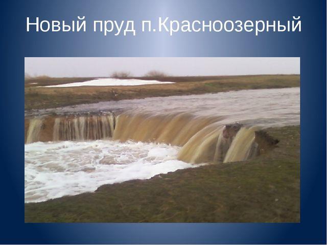 Новый пруд п.Красноозерный