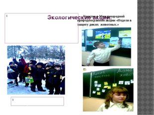 Экологические акции. Цель: - привлечение детей к сохранению природы родного
