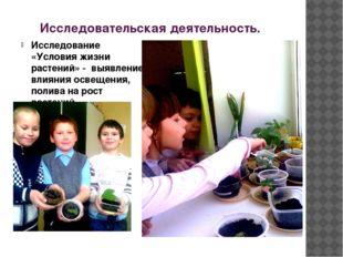 Исследовательская деятельность. Исследование «Условия жизни растений» - выявл