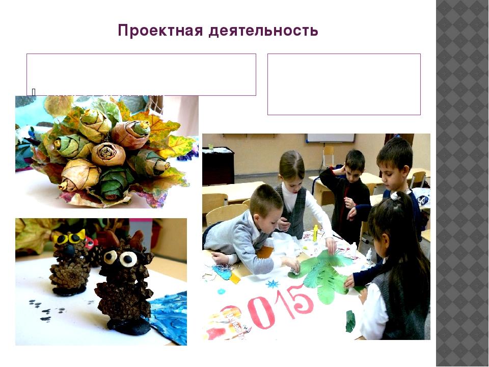Проектная деятельность Проект «Осенние фантазии.» Изготовление новогоднего пл...