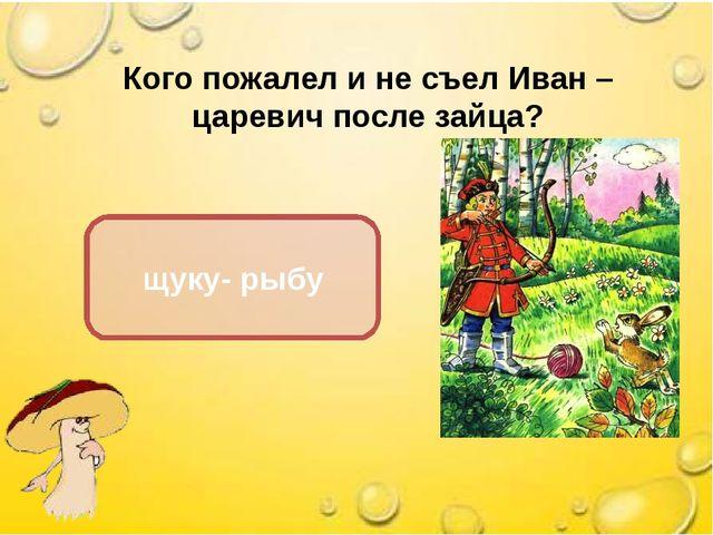 Кого пожалел и не съел Иван – царевич после зайца? щуку- рыбу