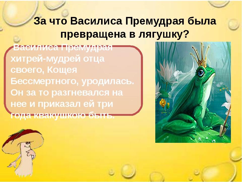 За что Василиса Премудрая была превращена в лягушку? Василиса Премудрая хитре...
