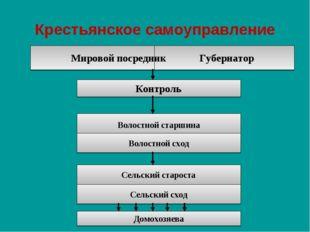 Крестьянское самоуправление Мировой посредник Губернатор Контроль Волостной с