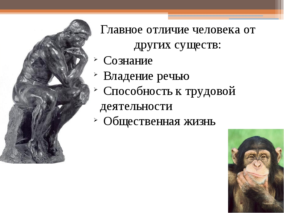 Главное отличие человека от других существ: Сознание Владение речью Способнос...