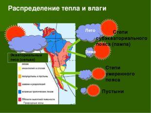 Лето Зима Степи субэкваториального пояса (пампа) Степи умеренного пояса Пусты