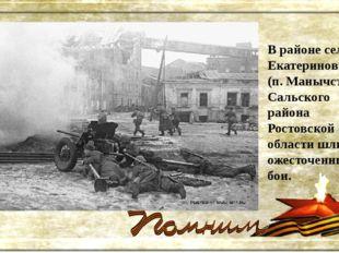В районе села Екатериновка (п. Манычстрой) Сальского района Ростовской област