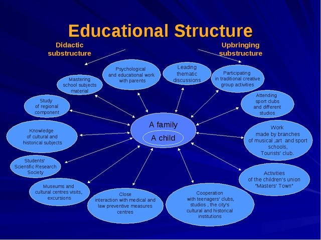 Educational Structure Leading thematic discussions Work made by branches of m...