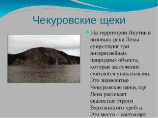 Чекуровские щеки На территории Якутии в низовьях реки Лены существуют три инт