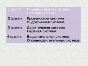1 группа Пищеварительная система Половаясистема 2 группа Кровеносная система