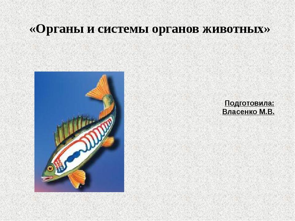 «Органы и системы органов животных» Подготовила: Власенко М.В.