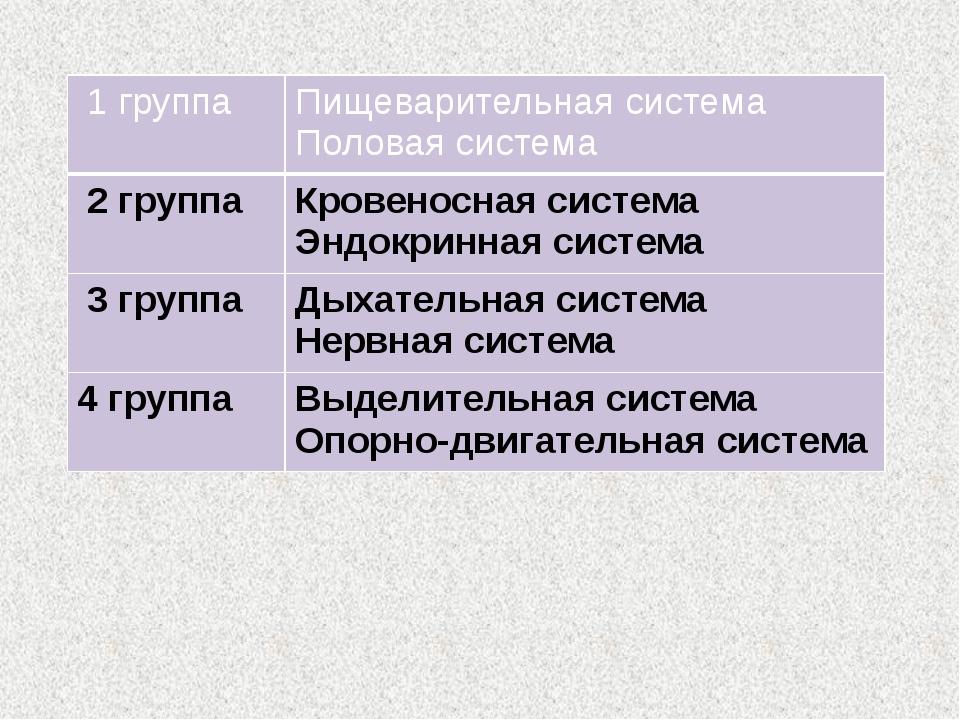 1 группа Пищеварительная система Половаясистема 2 группа Кровеносная система...