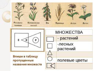 МНОЖЕСТВА - растений -лесных растений полевые цветы
