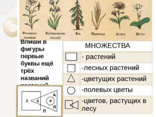Впиши в фигуры первые буквы ещё трёх названий растений МНОЖЕСТВА - растений