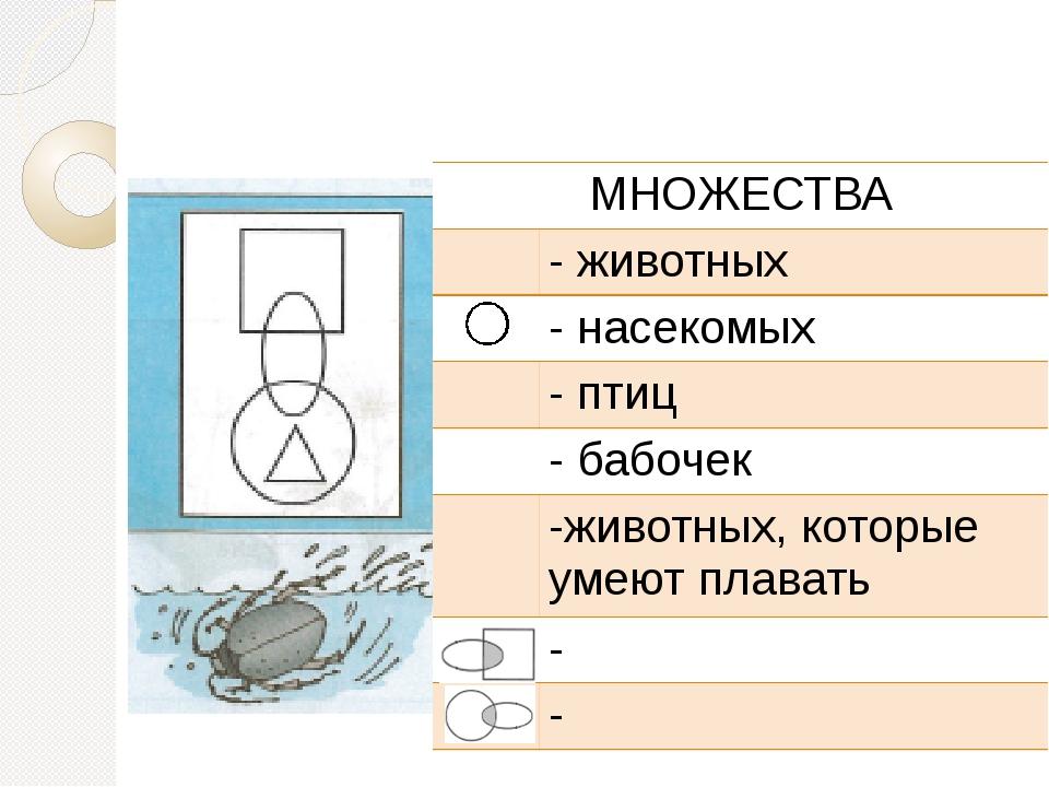 МНОЖЕСТВА - животных - насекомых - птиц - бабочек -животных, которые умеют п...