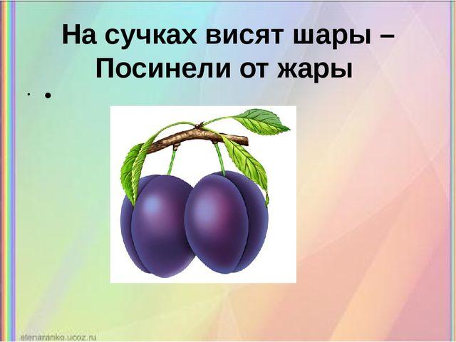 На сучках висят шары – Посинели от жары •