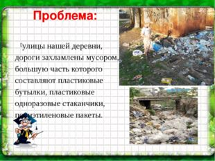 Проблема: улицы нашей деревни, дороги захламлены мусором, большую часть котор