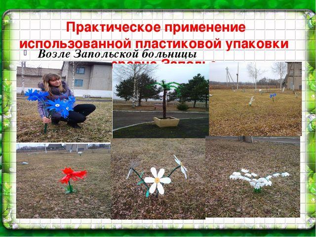 Практическое применение использованной пластиковой упаковки в деревне Заполье...