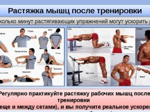 Растяжка мышц после тренировки Несколько минут растягивающих упражнений могут