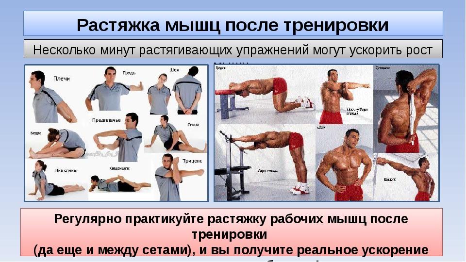 Растяжка мышц после тренировки Несколько минут растягивающих упражнений могут...