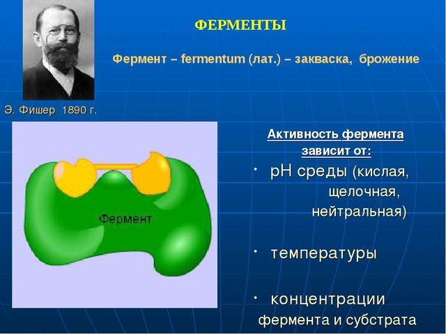Активность фермента зависит от: pH среды (кислая, щелочная, нейтральная) тем...