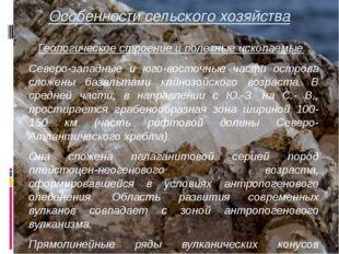 Особенности сельского хозяйства Геологическое строение и полезные ископаемые.