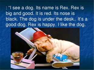 ": ""I see a dog. Its name is Rex. Rex is big and good. It is red. Its nose is"