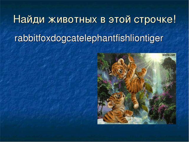 rabbitfoxdogcatelephantfishliontiger Найди животных в этой строчке!