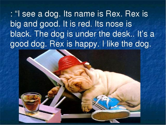 ": ""I see a dog. Its name is Rex. Rex is big and good. It is red. Its nose is..."