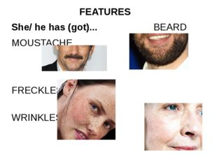 She/ he has (got)... BEARD MOUSTACHE FRECKLES WRINKLES FEATURES