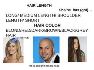 LONG/ MEDIUM LENGTH/ SHOULDER LENGTH/ SHORT HAIR COLOR BLOND/RED/DARK/BROWN/B