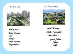In the city In the country tall houses small houses a lot of animals clean ri