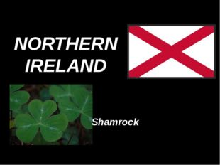 NORTHERN IRELAND Shamrock