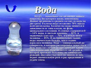 Вода ВОДА — важнейшее составляющее живого вещества, без которого жизнь невозм